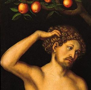 Adam by Lucas Cranach the Elder
